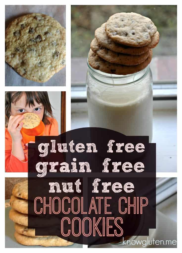Gluten free grain free nut free chocolate chip cookies know gluten